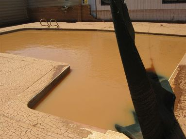 Brown water in swimming pool